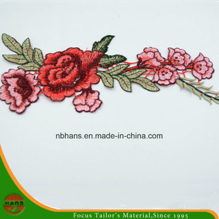 2017 New Design Embroidery Lace (HANS-CH13)