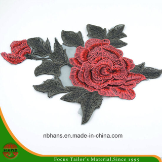 2017 New Design Embroidery Lace (HANS-CH06)